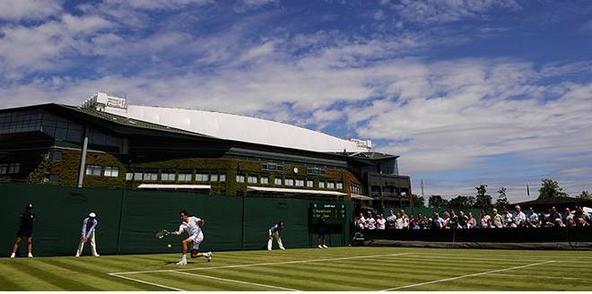 Wimbledon Champs DVD