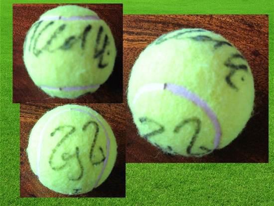 Signed Balls