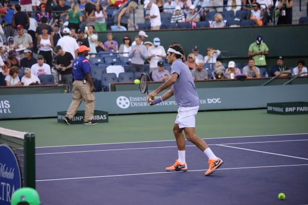 Federer in 2014