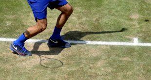 Federer vs Struff Halle 2016