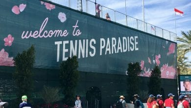 Photo of Tennis Paradise