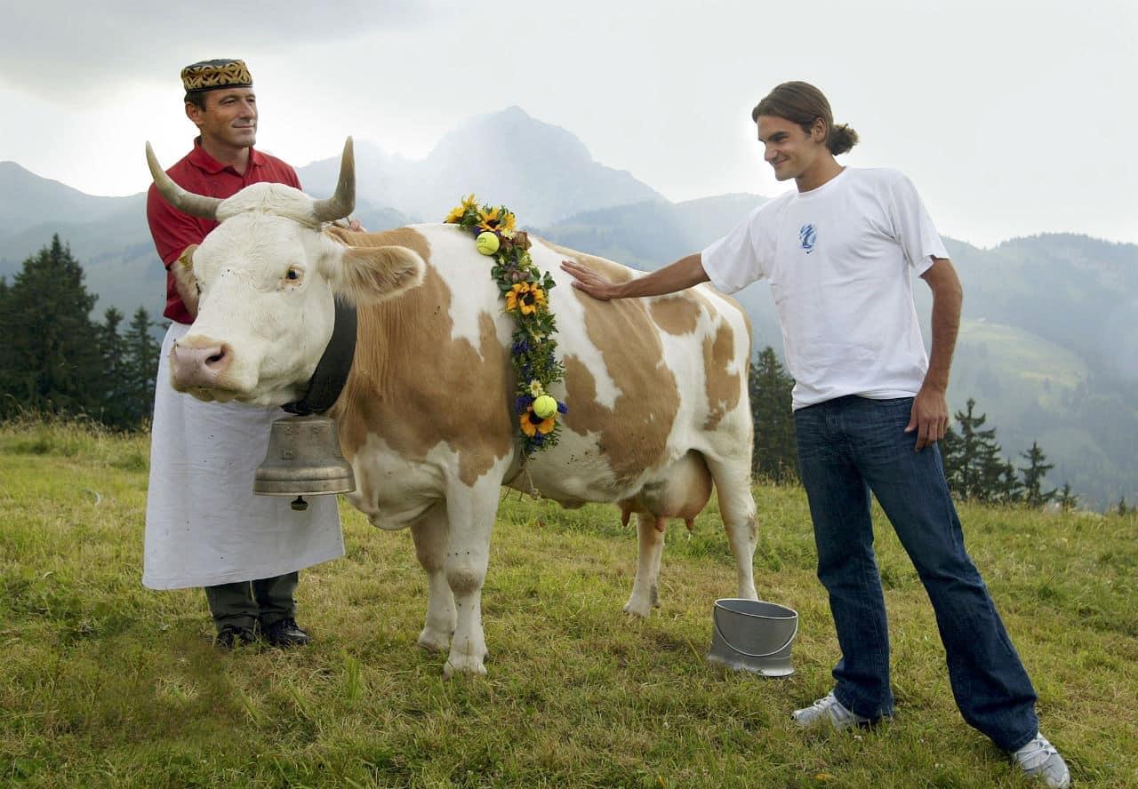 Federer Cow Prize
